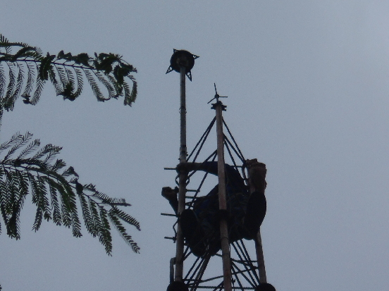 MOUNTING OF INDELEC PREVECTRON WITH ELEVATION ON A TOWER AT NIPCO PLC, APAPA LAGOS